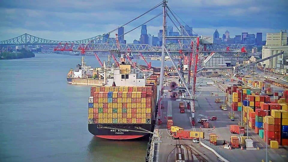 delices de la foret valli importation port 03