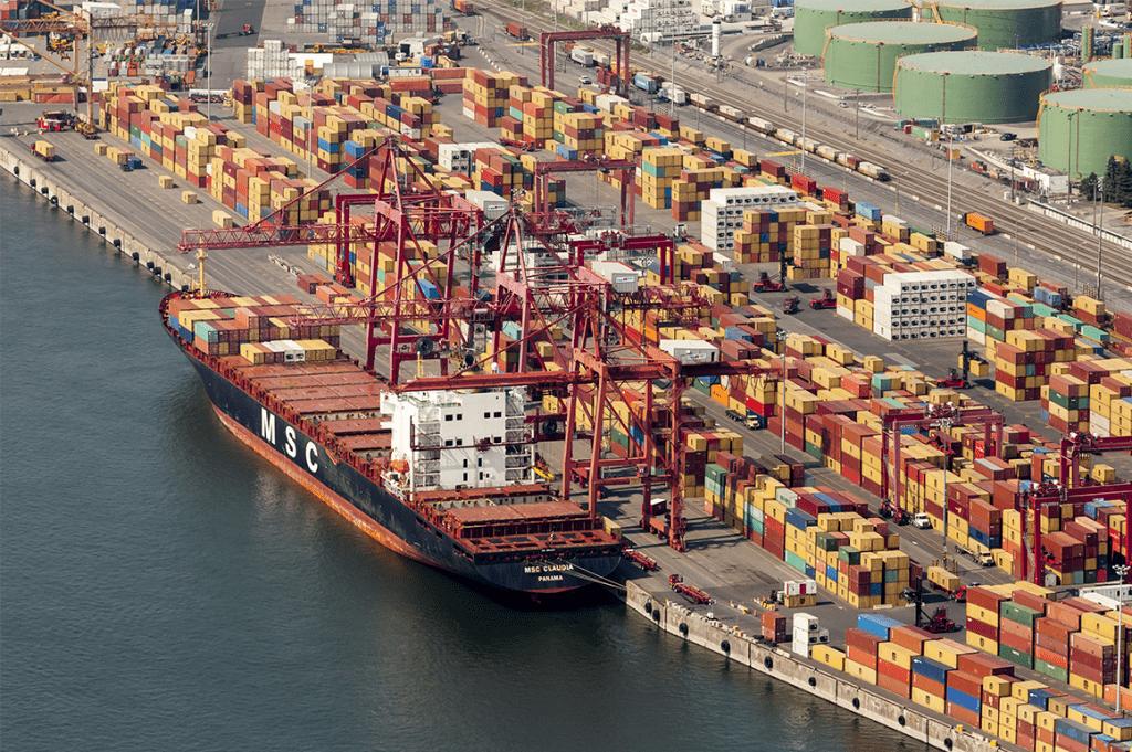 delices de la foret valli importation port